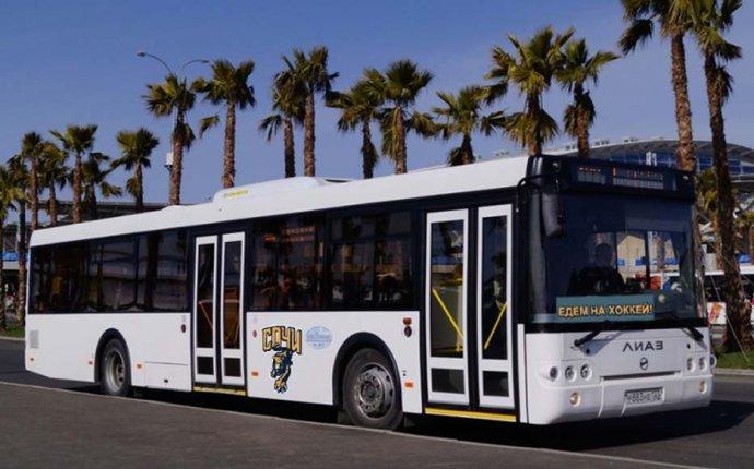Бесплатный автобус Сочи - Олимпийский парк » Олимпийский парк