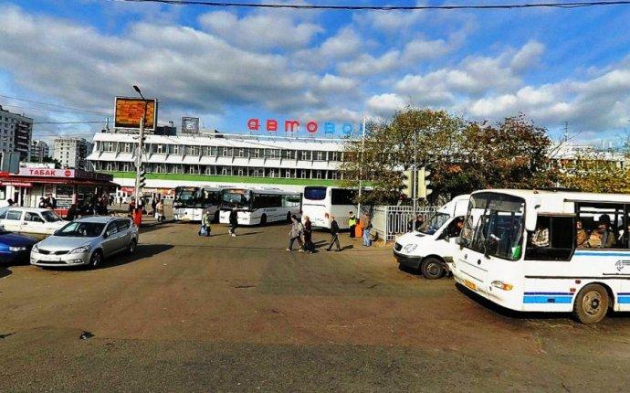 Новый автобусный рейс из Москвы: в Адлер и Сочи всего за две ночи